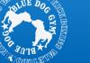 bluedog-gym.jpg